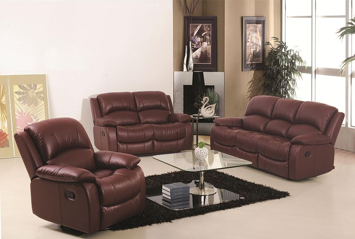 leather lounges in the living area